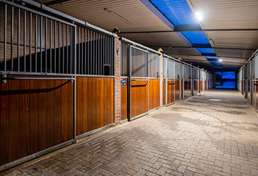 Stal de Sjiem riding school